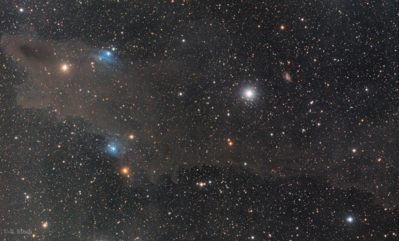 Kinch_Shark_Nebula_1800x484.jpg