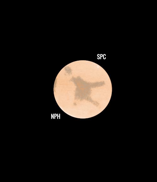 Mars07December2020.png