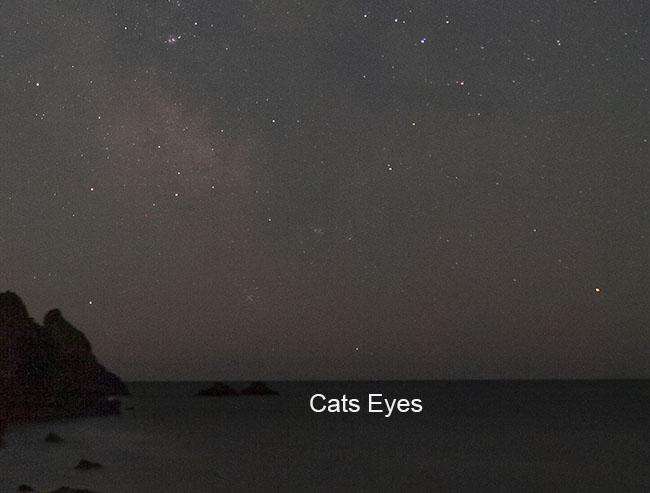 CatsEyes2013.jpg